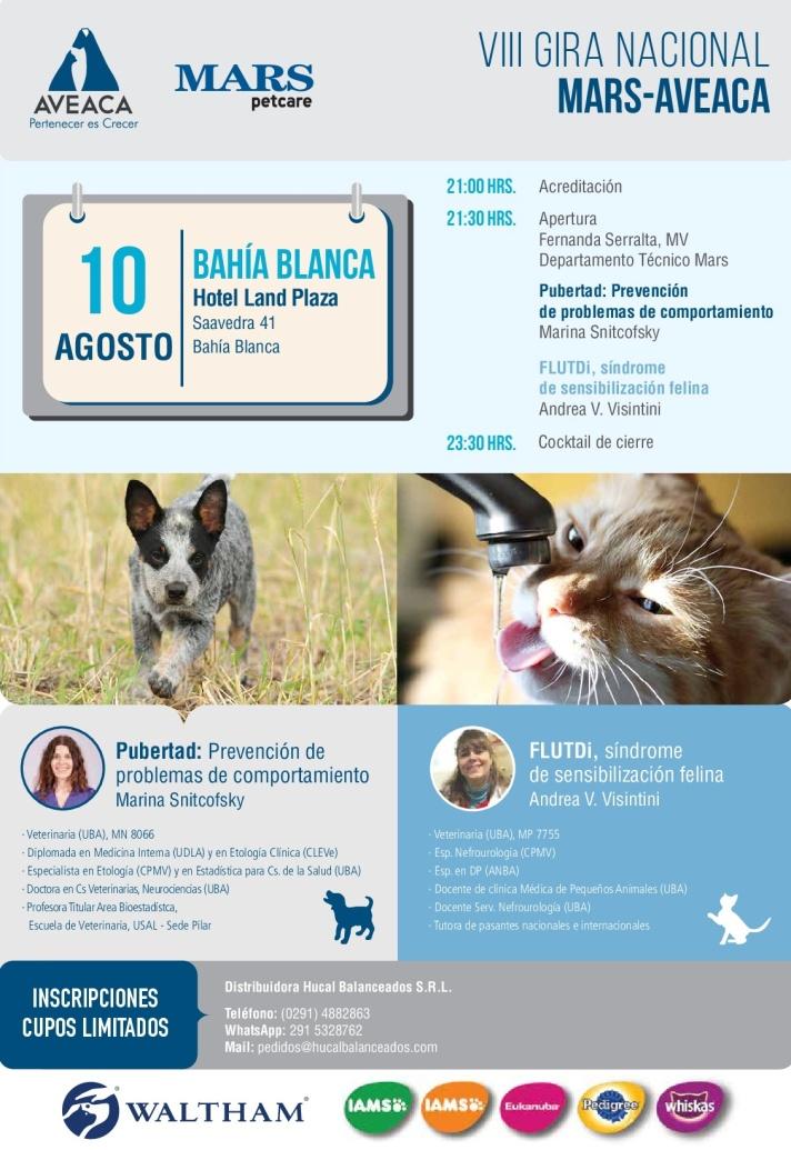 Flyer_gira_BBlanca_10.08 (1)-001.jpg